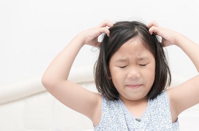 блохи в голове у ребенка