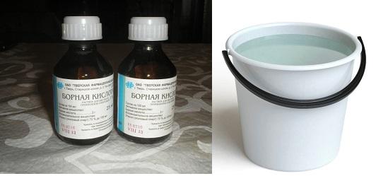 Свойства борной кислоты и правила использования