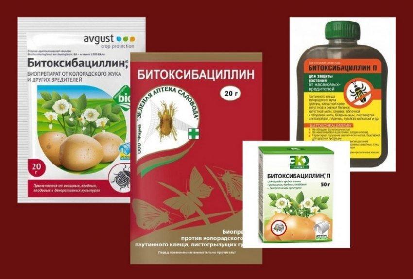 Препарат Битоксибациллин.